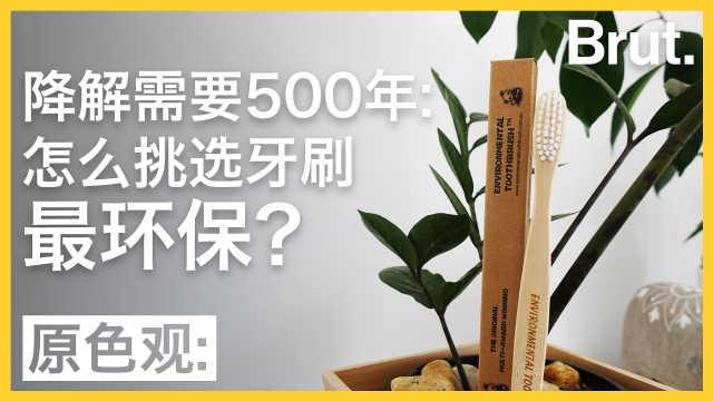 牙刷降解要五百年:怎么挑更环保?