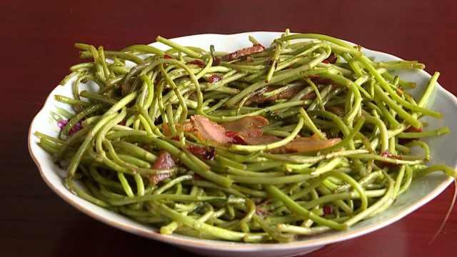 鄱阳湖的草成江西名菜:藜蒿炒腊肉