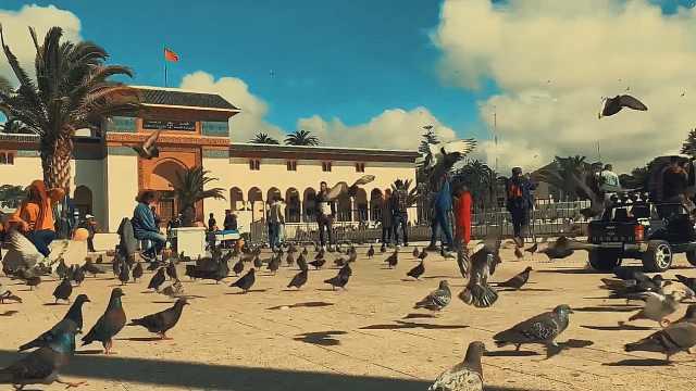 充满有趣灵魂的卡萨布兰卡鸽子广场