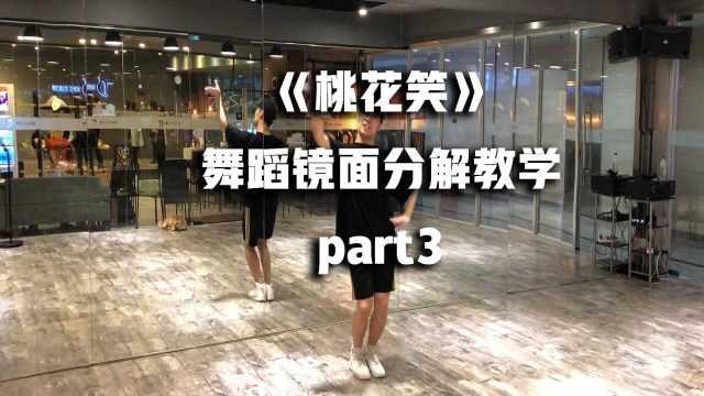 《桃花笑》舞蹈镜面分解教学part3