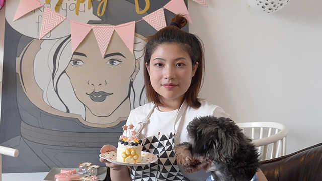 为宠物做蛋糕的美女烘焙师